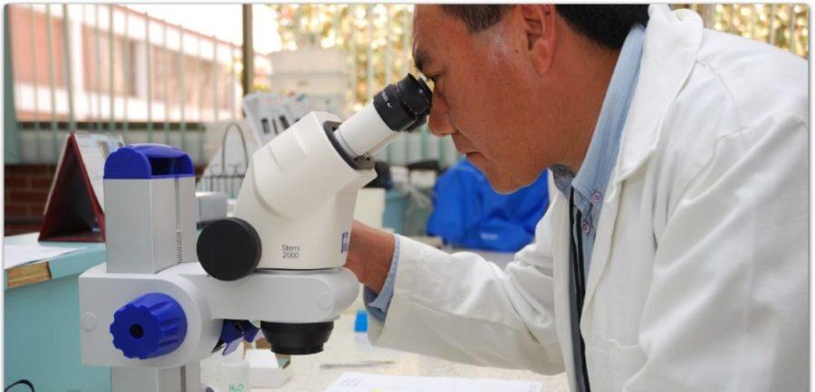 Медик смотрит в микроскоп