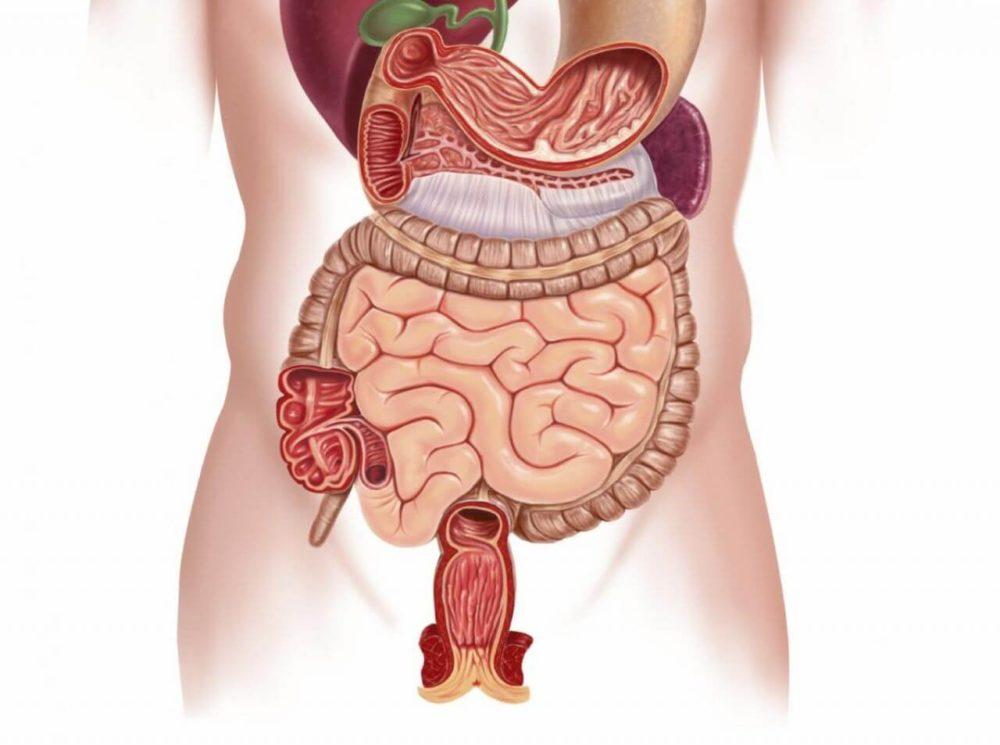 Кандидоз желудка