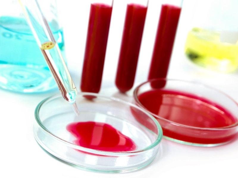 Анализ крови на кандидоз